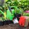 Лунный календарь садовода и огородника на октябрь 2021 года